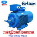 motor điện elektrim