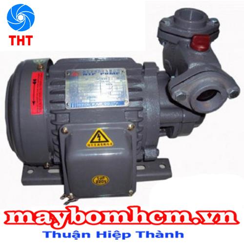 Máy bơm nước mini bánh răng, vỏ gang, đầu gang NTP HCP225-1.37 26 1/2HP